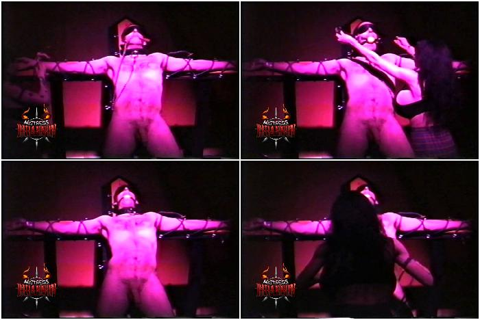Mistress Rhiannon Megapack-Gigant Tits-clip  55
