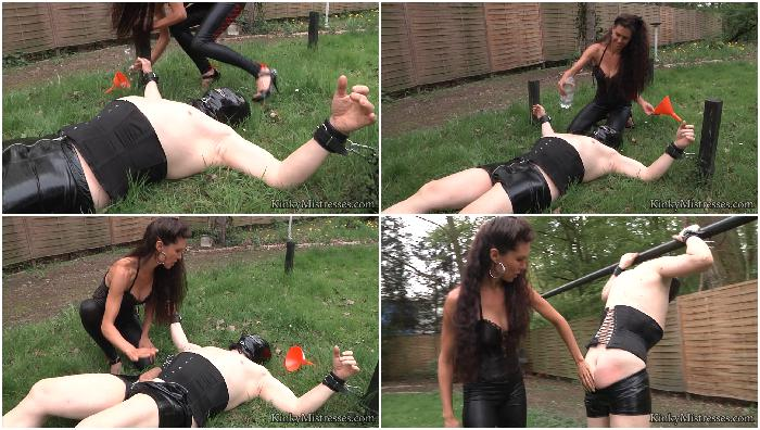 Kinky Mistresses Collection 375