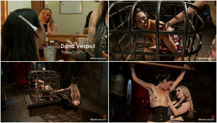 2012-01-19 17374 The Terrifying Nature of Electricity A Reality Film Dana Vespoli, Aiden Starr