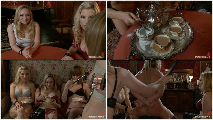 2012-08-05 8445 Maid Humiliation Aiden Starr, Maitresse Madeline, Jessie Cox, Ashley Fires