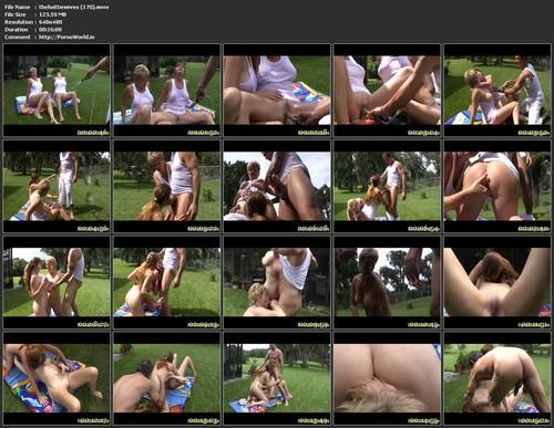 Hot Mature Vids Wmv 121