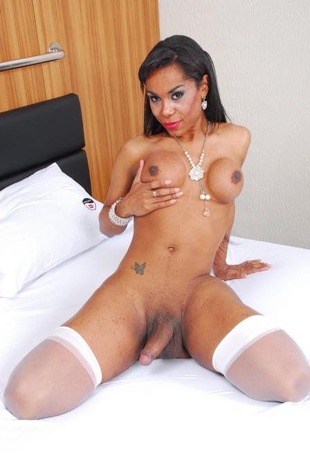 Priscila has exotic features on her face - TS Priscila Sales