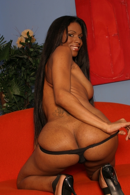 Black cock, hot tits and a pretty feminine face - TS Andreia