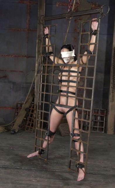 Prancing Parade - Bondage, BDSM
