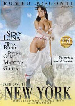 Gang Bang of New York (2006)