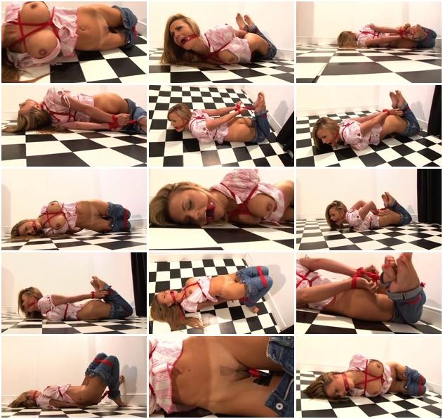 http://ist3-2.filesor.com/pimpandhost.com/1/4/2/7/142775/3/J/n/g/3JngA/Sexy_Bondage_And_BDSM-152.jpg