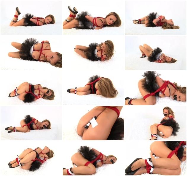 http://ist3-2.filesor.com/pimpandhost.com/1/4/2/7/142775/3/J/n/g/3Jngz/Sexy_Bondage_And_BDSM-156.jpg