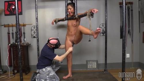 image The beginning the slavegirl 7 times pierced slut