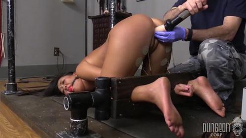 ebony sluts in hot pants