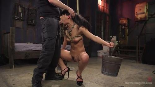 Gina Valentina's Slave Collar