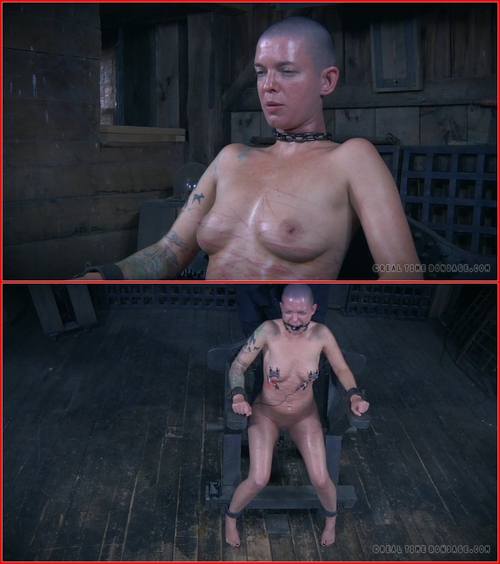 Abigail Dupree (The Extended Feed of Miss Dupree Part 5 – 19.09.2015) BDSM, Torture, Humiliation
