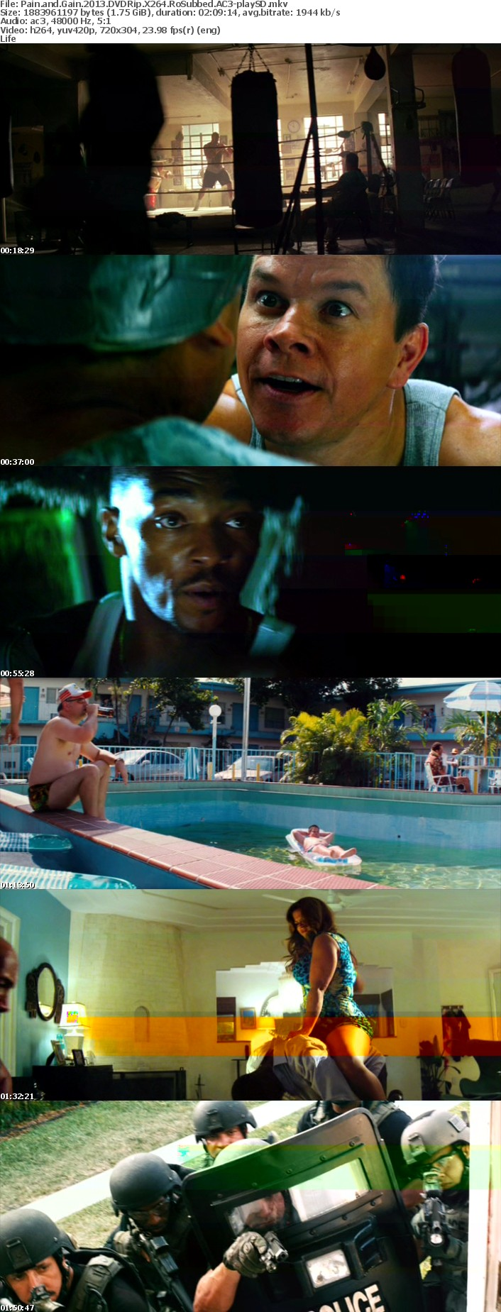 Pain and Gain 2013 DVDRip X264 RoSubbed AC3-playSD