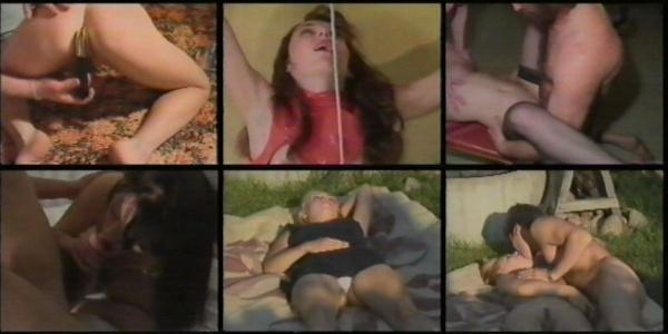 http://ist3-2.filesor.com/pimpandhost.com/1/_/_/_/1/2/Q/t/V/2QtV9/Home_Elegant_Porn_cover.jpg