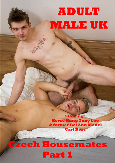 Czech Housemates (2015) - Gay Movies