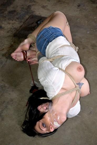 Signals - Bondage, BDSM