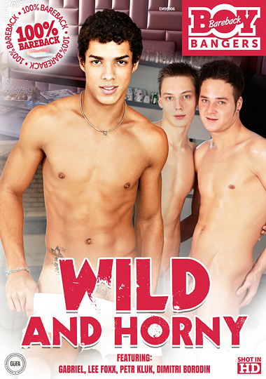 Wild And Horny (2015) - Gay Movies