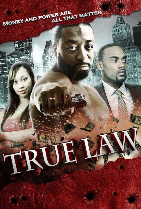 True Law 2015 DVDRip XviD-EVO