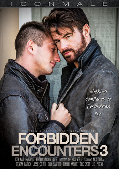 Forbidden Encounters 3 (2015) - Gay Movies