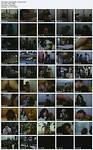Borboletas e Garanhoes (1985) [Vintage Movie] [Download]