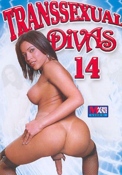 Transsexual Divas 14 (2007)