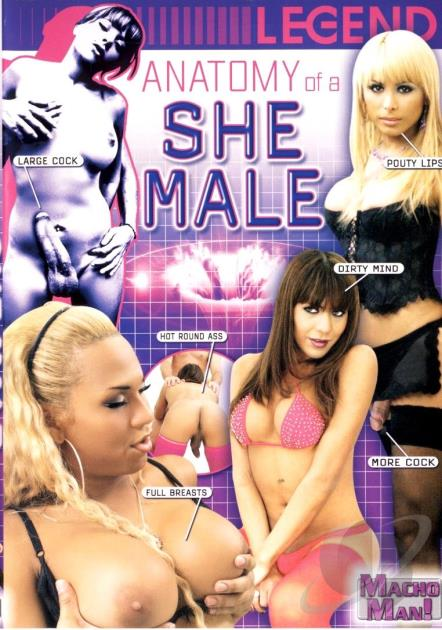 Anatomy Of A Shemale (2007)