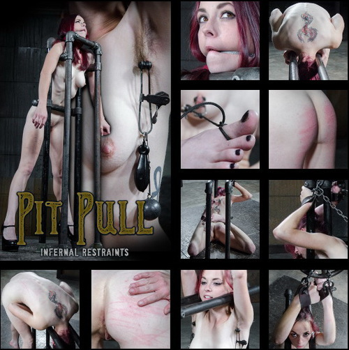 INFERNAL RESTRAINTS: Jan 8, 2016: Pit Pull | Ivy Addams