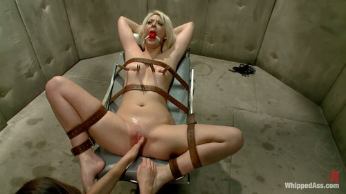 Carol troy mature porn star