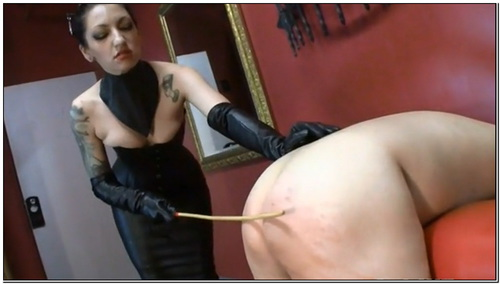 Trial By Pain Female Domination