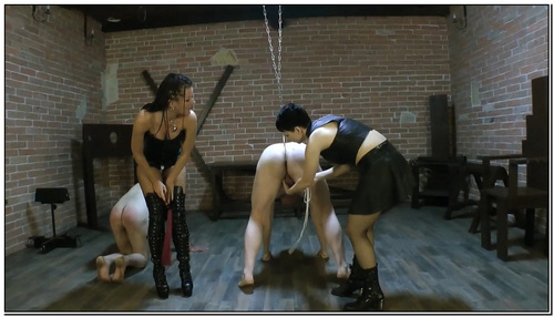 Femdom 2712142 Female Domination