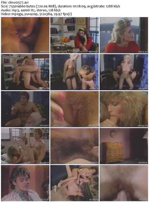 Nina hartley jim bentley amp dude from switch hitters 2 8