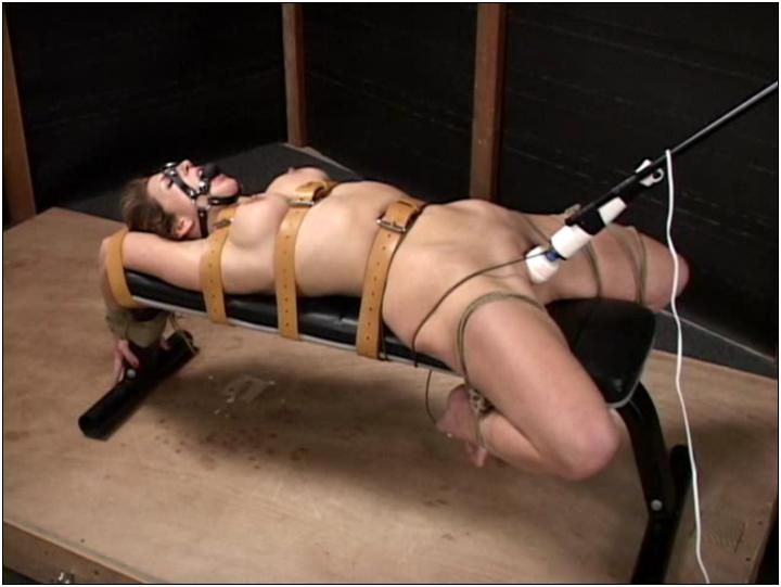 bdsm celeste star perfect slave rapidshare