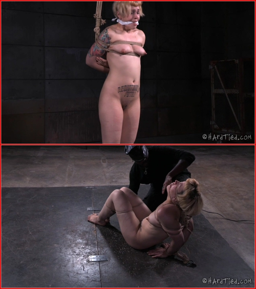 Essence of Pain – Elizabeth Thorn – Jack Hammer – 29.07.15 Ass Caning, Caning, Hitachi, Orgasm, Pussy Flogging, Pussy Whipping, Rope Bondage, Rope Gag, Single Tail, Thigh Caning, Vibrator, Whip