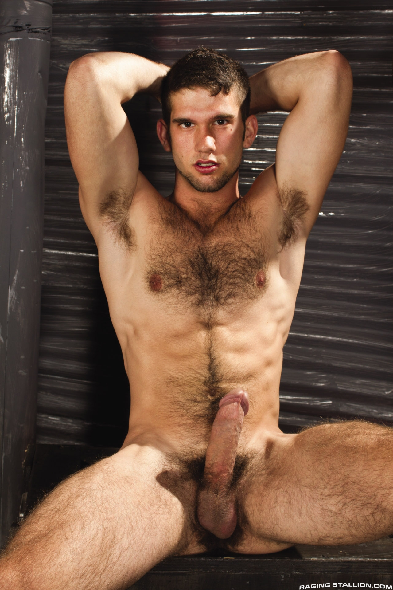 Fetish hairy chest